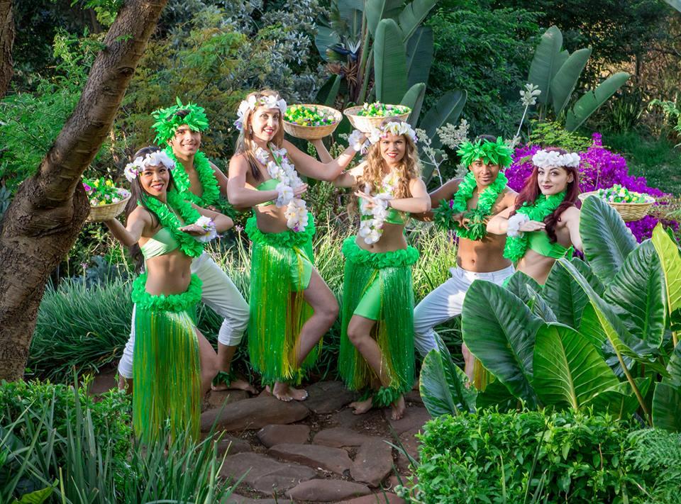 Hula/Island/Sega Dancers
